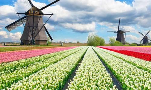 nizozemska_belgija_lux1